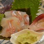 笹鮨 - 真鱈の利尻昆布締め
