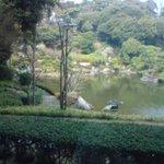 ハナムラ - 御庭見えます
