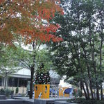 ますたにラーメン - 帰りに、紅葉とツリーのコンビが見れました♪