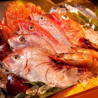 全国の漁港から季節の鮮魚を毎日直送
