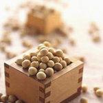 豆腐料理 空野 - 国内産大豆の最高峰。北海道十勝産のトヨマサリ
