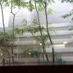 ミドリエカフェ - カウンターから見る外