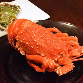 ◆地元の食材を使用したこだわりの創作料理!