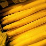 ビストロ アンプル - 色白美人なアスパラガスほんのり甘い