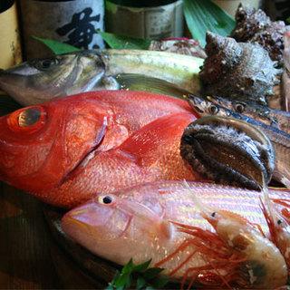 毎日仕入れる鮮度抜群食の魚介をご堪能あれ