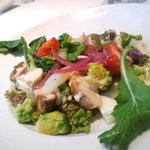 ピノ・ノワール - 有機野菜とホウボウのサラダ(3000円のランチより)