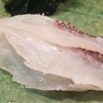 ゆう座 - 再訪 鯛