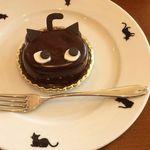 Chat noir - シャ・ノワール