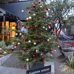 ガーデンハウス レストラン - クリスマスツリーのお写真を撮っていたら・・