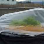 サブマリン - 【2014.12】持ち帰りではこんな袋になりました♪