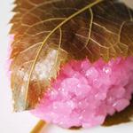 静月 - 桜餅