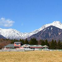 清泉寮 ファームショップ - 雪化粧した八ヶ岳をバックに「清泉寮ファームショップ」