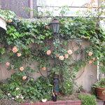 ル・ビストロ クー ドポール - 5月にはバラの咲く植え込みもあります