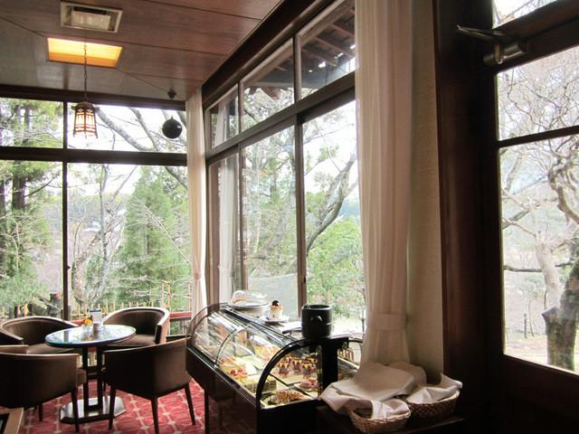 奈良ホテル ティーラウンジ - カフェの店内。キレイな樹々を望みます(2014.12)