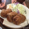 tonkatsuyachiyonishiten - 料理写真:ヒレカツ
