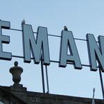 マヌエル・カーザ・デ・ファド - 屋根の上にカモメ