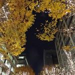 マヌエル タスカ ド ターリョ - 映える美しい夜でございました