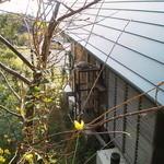 小さな宿&レストラン しいの木やま - みゃあ君専用階段です、愛されてますねー