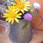 小さな宿&レストラン しいの木やま - 今日は黄色のお花がメイン