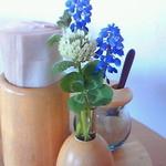 小さな宿&レストラン しいの木やま - 今日はブルーのお花と、幸運の四つ葉のクローバー