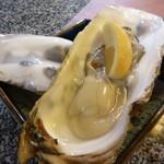 34141009 - 三陸産の生牡蠣