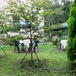 CUCINA 原村菜園 -