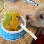 34227028 - 犬用野菜ケーキ