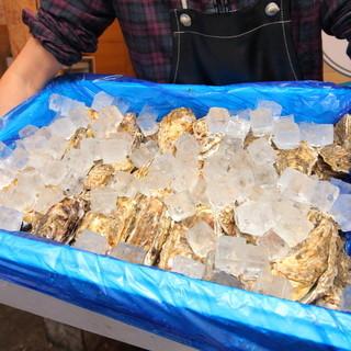 産地直送の生牡蠣は毎日届く鮮度抜群!