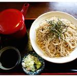 そば茶屋付知店 - 「ざる蕎麦 全景」(2012.07)