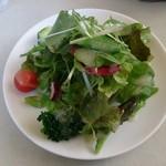 34331369 - サラダはいろんな種類の野菜の盛合せで、ドレッシングも美味しい。