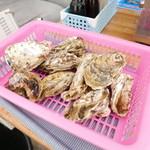 ケンちゃんかき - 牡蠣1かご1000円。