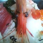 海鮮丼 浜辺丸 - 海老さん
