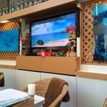 カフェ プルメリア - 真ん中写真と思いきやリアムタイムなのかハワイの上空映像です!人が動いて波もうってます!