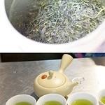茶通仙 多田製茶 -