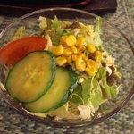 ビストロ サザンウインド - サラダも共通です。
