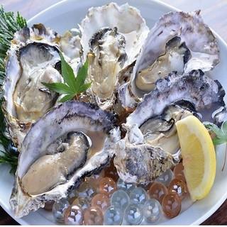 やっぱり!これ!!~美味しい牡蠣を東京のみなさんに届けたい~
