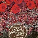 34675089 - 2014年クリスマス