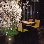 桜ヶ丘 - 桜祭り 早咲きの満開の桜を見ながら、お食事を