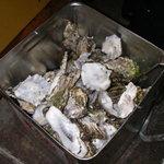 かき小屋 - 18リットル缶にいっぱいのカキの殻