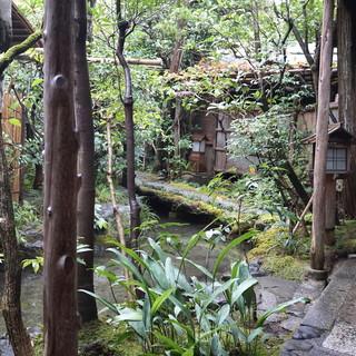 瓢亭 本店 - 庭を眺めているだけで、心が落ち着いてきます(2015/01)