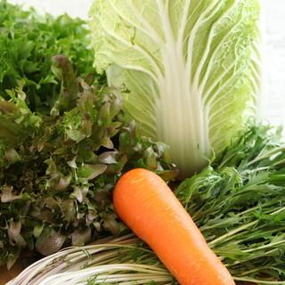 野菜はやっぱり那須高原産