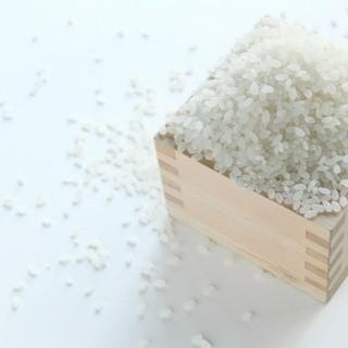 海鮮丼に合う強いコシ、粘りのある北海道産米を使用。