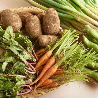 安心安全【契約農家直送!】無農薬・減農薬・無化学肥料のお野菜