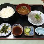 かどや食堂 - 生しらす丼(味噌汁付き)1100円