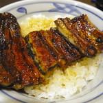 うなぎのふじ井 - うな丼「竹」