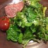 ベル・リーノ - 料理写真:ランチのサラダ