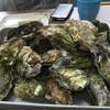 かき小屋 広田湾 - 料理写真:蒸しかき