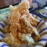 ビオトープ芽吹き屋 - ミニ天丼アップ