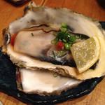 35057935 - 生牡蠣
