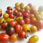 オーガニックカフェ チャント - 地元の季節の旬の無農薬、有機野菜を使用しています